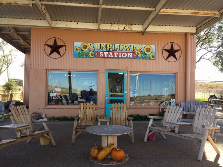 """Sunshine Station, a decor and souvenir boutique, is run by Fran who was the woman that inspired the Disney """"Cars"""" character Flo."""